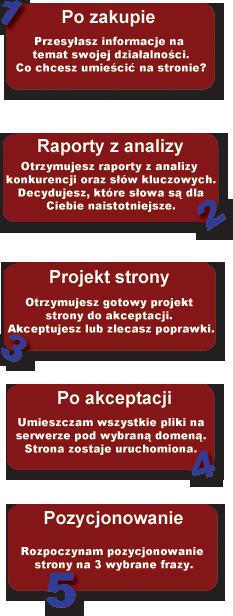 tworzenie stron internetowych www promocja gwarancja etapy