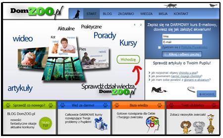 tworzenie strony www internetowej portalu internetowego sklepu